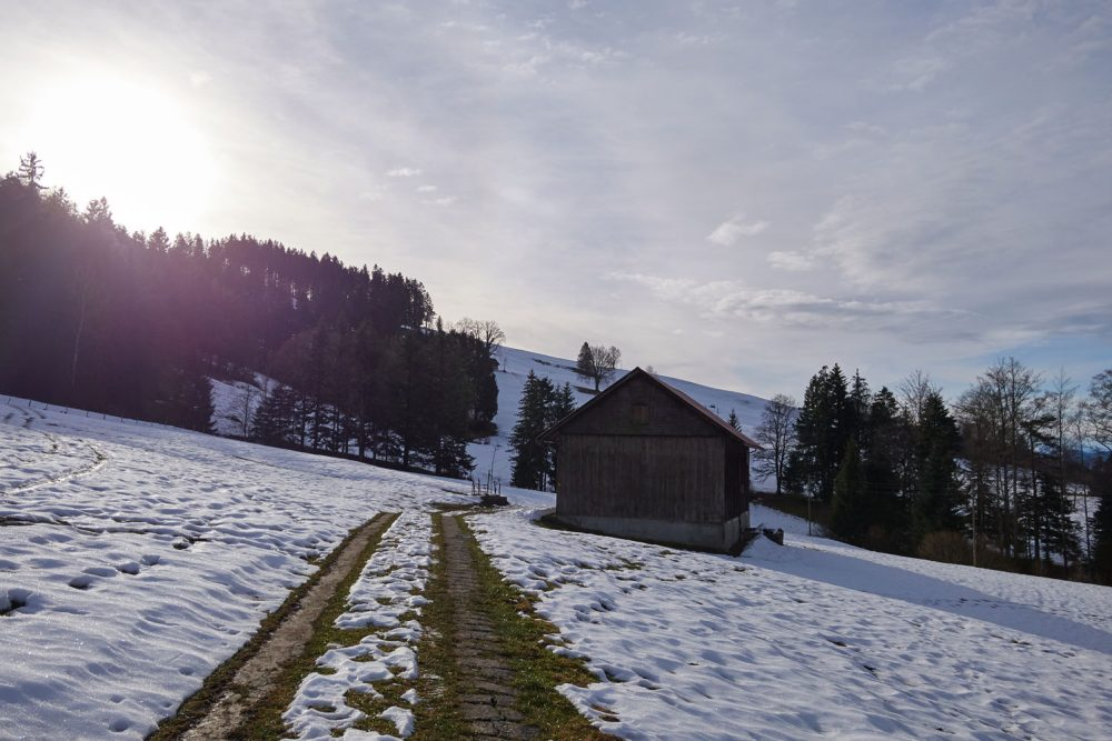 toesstal-toggenburg