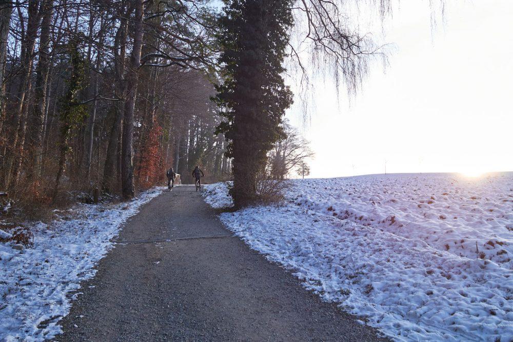 frauenfeld-steg-im-toesstal