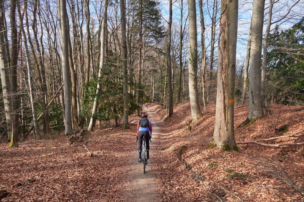 gravel-bike-tour-winterthur