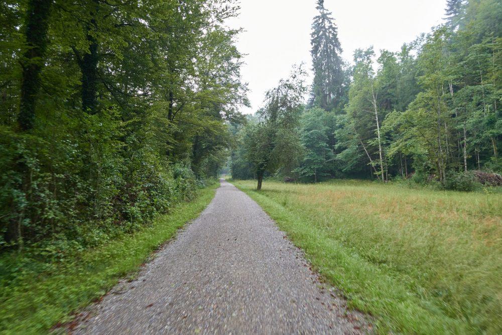 gravelbike-tour-zürich