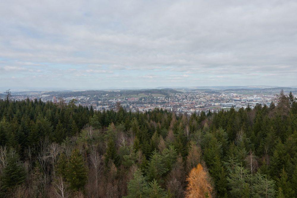 Aussicht vom Eschenberg Turm